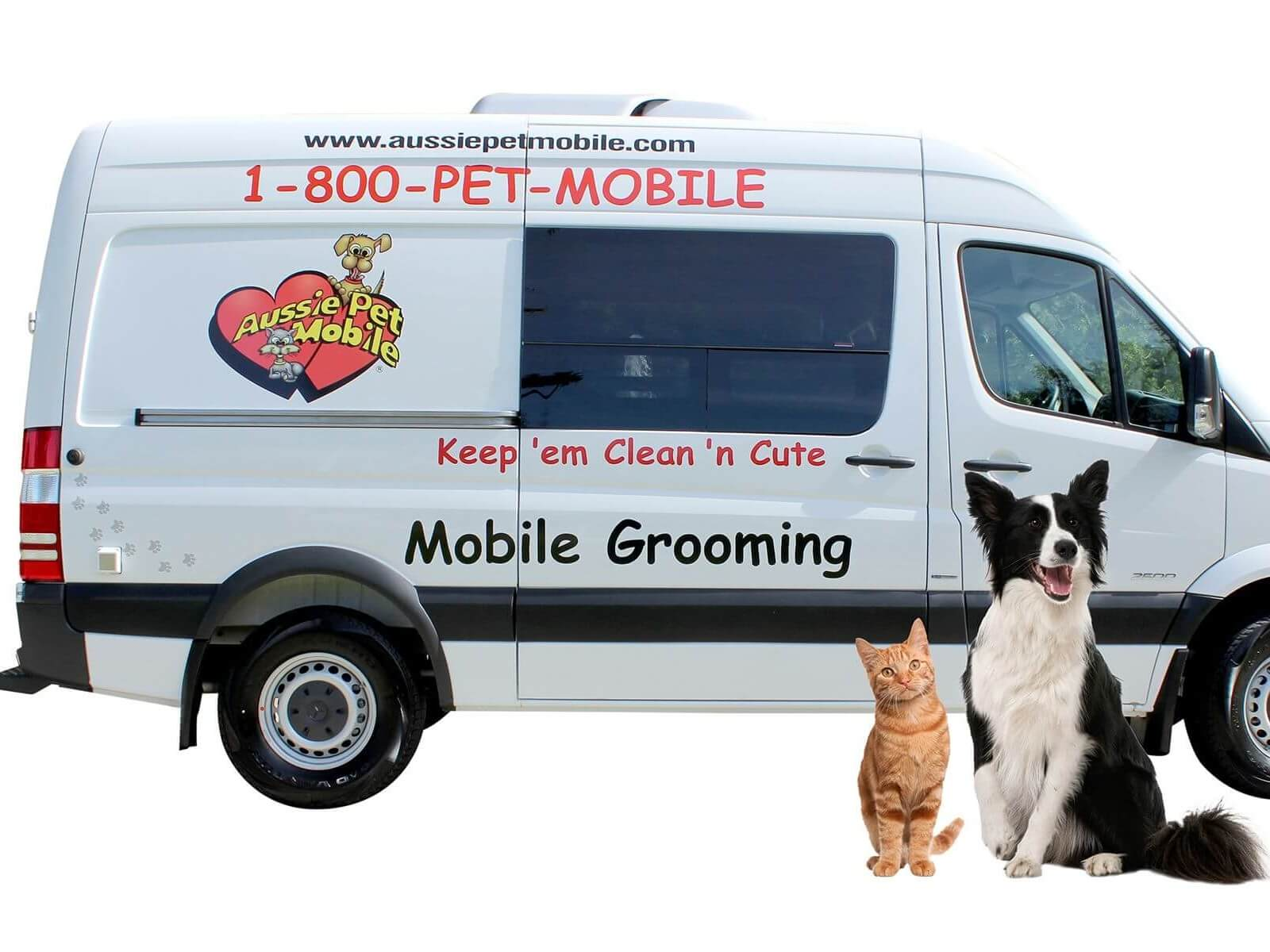 Aussie Pet Mobile Lehigh Valley Mobile Grooming For Cats Dogs